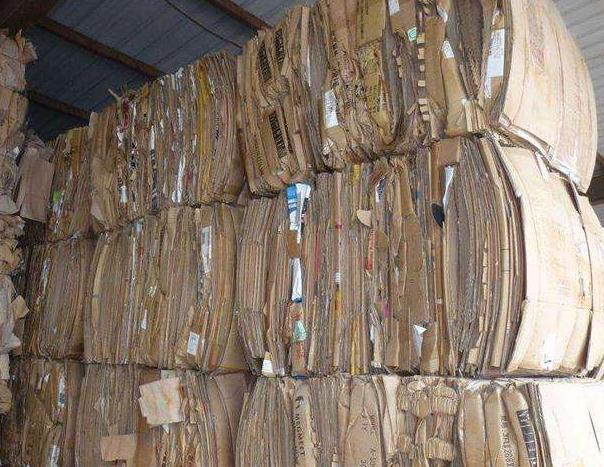 废纸箱必威注册网址 (3)